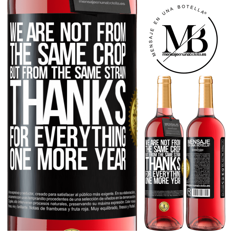 24,95 € Free Shipping   Rosé Wine ROSÉ Edition We are not from the same crop, but from the same strain. Thanks for everything, one more year Black Label. Customizable label Young wine Harvest 2020 Tempranillo