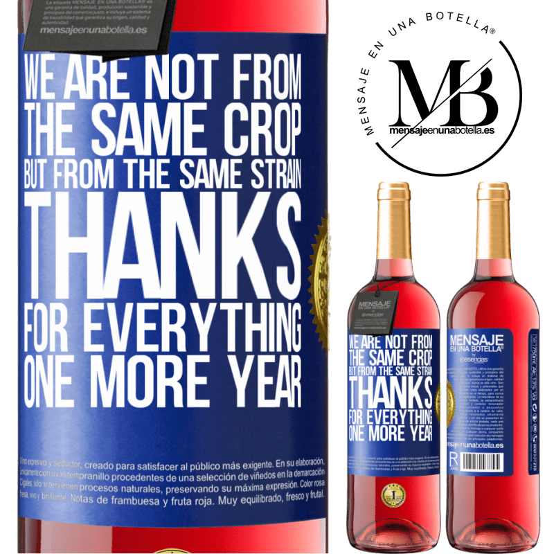 24,95 € Free Shipping   Rosé Wine ROSÉ Edition We are not from the same crop, but from the same strain. Thanks for everything, one more year Blue Label. Customizable label Young wine Harvest 2020 Tempranillo