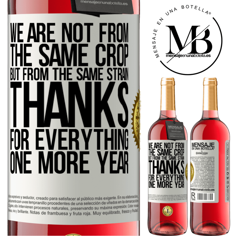 24,95 € Free Shipping   Rosé Wine ROSÉ Edition We are not from the same crop, but from the same strain. Thanks for everything, one more year White Label. Customizable label Young wine Harvest 2020 Tempranillo