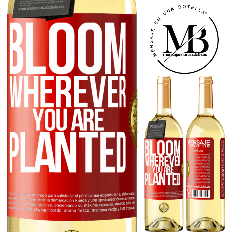 24,95 € Free Shipping | White Wine WHITE Edition It blooms wherever you are planted Red Label. Customizable label Young wine Harvest 2020 Verdejo