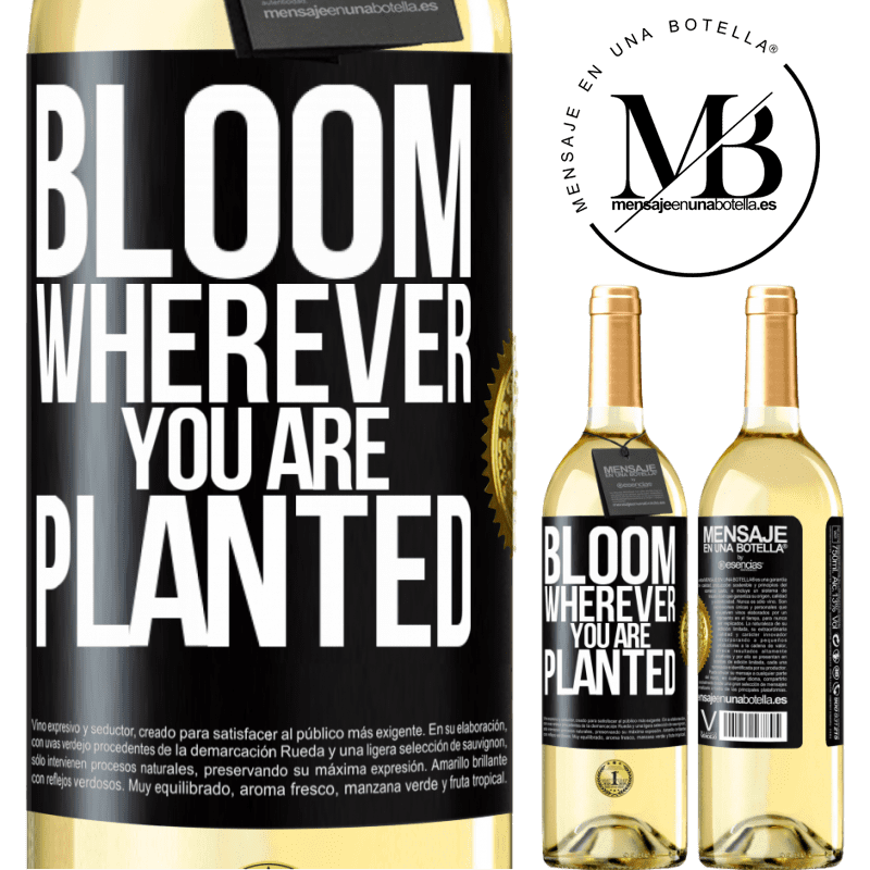 24,95 € Free Shipping | White Wine WHITE Edition It blooms wherever you are planted Black Label. Customizable label Young wine Harvest 2020 Verdejo