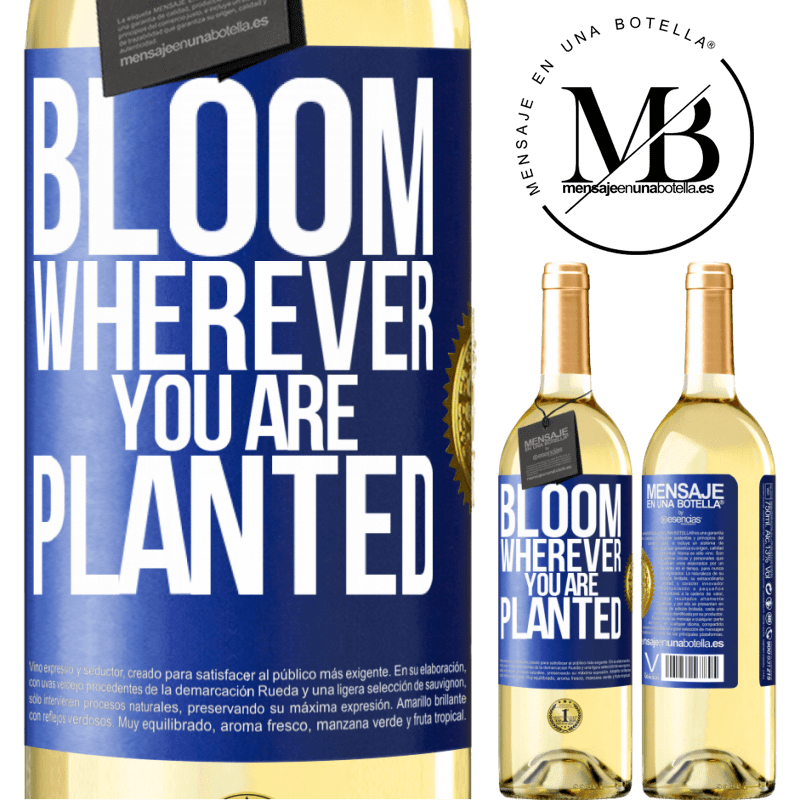 24,95 € Free Shipping | White Wine WHITE Edition It blooms wherever you are planted Blue Label. Customizable label Young wine Harvest 2020 Verdejo
