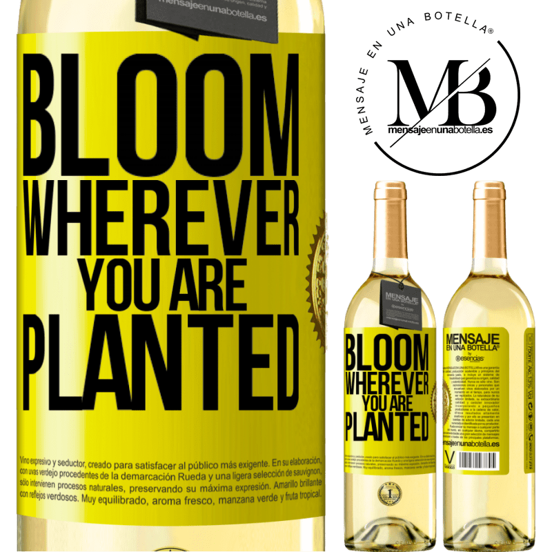24,95 € Free Shipping | White Wine WHITE Edition It blooms wherever you are planted Yellow Label. Customizable label Young wine Harvest 2020 Verdejo