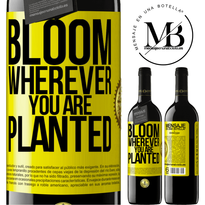 24,95 € Free Shipping | Red Wine RED Edition Crianza 6 Months It blooms wherever you are planted Yellow Label. Customizable label Aging in oak barrels 6 Months Harvest 2018 Tempranillo