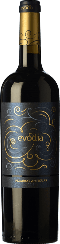 15,95 € Free Shipping   Red wine San Alejandro Evodia Pizarras Antiguas Crianza D.O. Calatayud Spain Grenache Bottle 75 cl