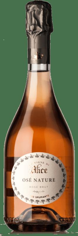 19,95 € Free Shipping | Red sparkling Camillo Donati Frizzante I.G.T. Emilia Romagna Emilia-Romagna Italy Lambrusco Maestri Bottle 75 cl