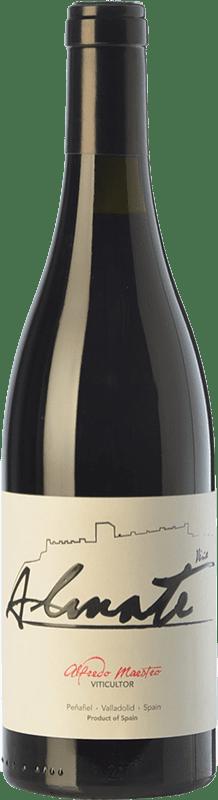 8,95 € Free Shipping | Red wine Maestro Tejero Viña Almate Joven I.G.P. Vino de la Tierra de Castilla y León Castilla y León Spain Tempranillo Bottle 75 cl