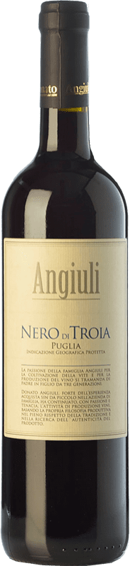 11,95 € Envío gratis | Vino tinto Angiuli I.G.T. Puglia Puglia Italia Nero di Troia Botella 75 cl