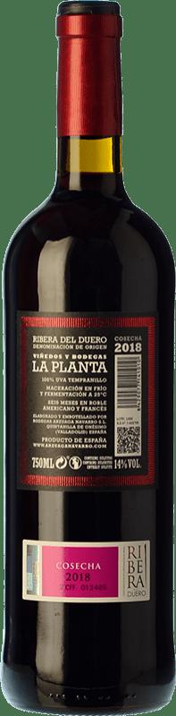 9,95 € Free Shipping   Red wine Arzuaga La Planta Joven D.O. Ribera del Duero Castilla y León Spain Tempranillo Bottle 75 cl