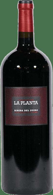 19,95 € | Red wine Arzuaga La Planta Joven D.O. Ribera del Duero Castilla y León Spain Tempranillo Magnum Bottle 1,5 L