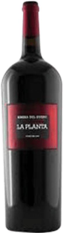 19,95 € Envío gratis | Vino tinto Arzuaga La Planta Joven D.O. Ribera del Duero Castilla y León España Tempranillo Botella Mágnum 1,5 L