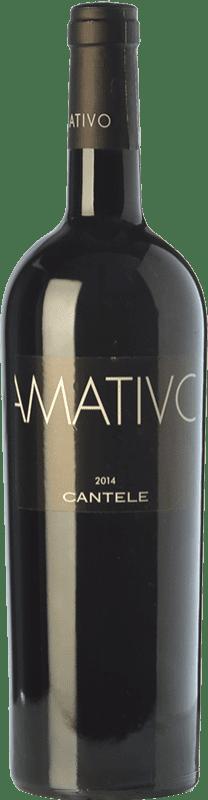 18,95 € | Red wine Cantele Amativo I.G.T. Salento Campania Italy Primitivo, Negroamaro Magnum Bottle 1,5 L