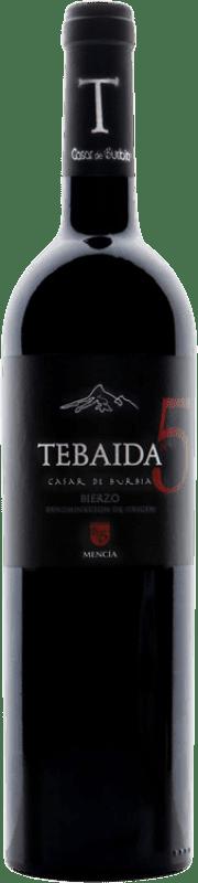 Vino rosso Casar de Burbia Tebaida Pago 5 Crianza D.O. Bierzo Castilla y León Spagna Mencía Bottiglia 75 cl