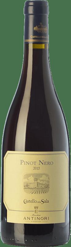 59,95 € Free Shipping | Red wine Castello della Sala Pinot Nero I.G.T. Umbria Umbria Italy Pinot Black Bottle 75 cl