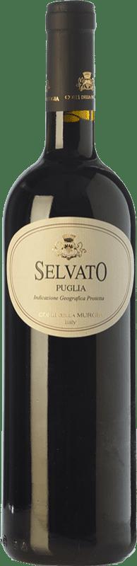 8,95 € Free Shipping | Red wine Colli della Murgia Selvato I.G.T. Puglia Puglia Italy Primitivo, Aglianico Bottle 75 cl