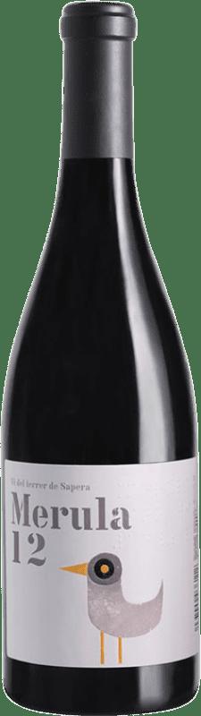 13,95 € Envío gratis | Vino tinto DG Merula D.O. Penedès Cataluña España Merlot Botella 75 cl