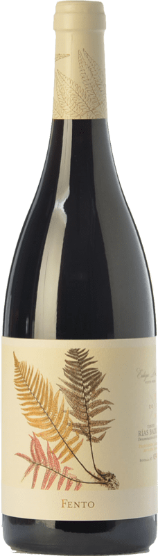 13,95 € Envío gratis   Vino tinto Fento Joven D.O. Rías Baixas Galicia España Mencía, Sousón, Caíño Tinto, Espadeiro, Brancellao, Pedral Botella 75 cl