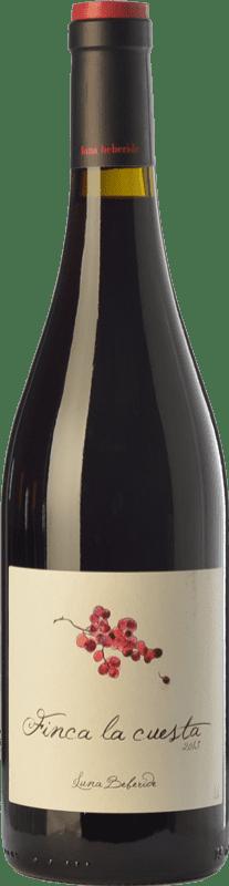11,95 € Envío gratis | Vino tinto Luna Beberide Finca La Cuesta Crianza D.O. Bierzo Castilla y León España Mencía Botella 75 cl