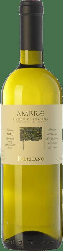 16,95 € Envío gratis | Vino blanco Poliziano Ambrae I.G.T. Toscana Toscana Italia Chardonnay, Sauvignon Botella 75 cl