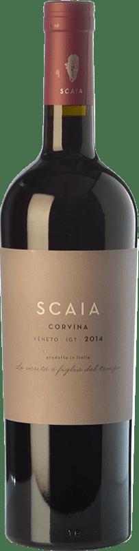 12,95 € Envío gratis | Vino tinto Tenuta Sant'Antonio Scaia I.G.T. Veneto Veneto Italia Corvina Botella 75 cl