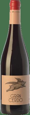Wine Love Gran Cerdo Joven 75 cl