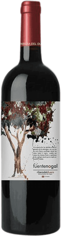 Free Shipping | Red wine Solterra Fuente Nogal Joven D.O. Ribera del Duero Spain Tempranillo Bottle 75 cl