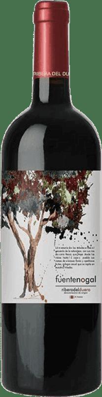 Kostenloser Versand | Rotwein Solterra Fuente Nogal Jung D.O. Ribera del Duero Spanien Tempranillo Flasche 75 cl