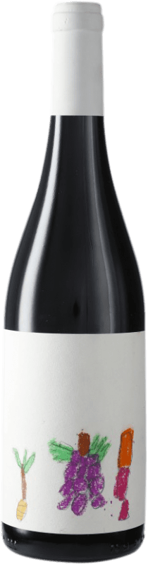 11,95 € Free Shipping | Red wine Masroig Vi Solidari D.O. Montsant Spain Syrah, Grenache, Carignan Bottle 75 cl