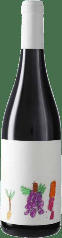 11,95 € Envío gratis | Vino tinto Masroig Vi Solidari D.O. Montsant España Syrah, Garnacha, Cariñena Botella 75 cl