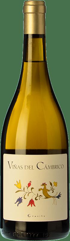 21,95 € Free Shipping | White wine Cámbrico Viñas del Cámbrico I.G.P. Vino de la Tierra de Castilla y León Castilla y León Spain Rufete White Bottle 75 cl